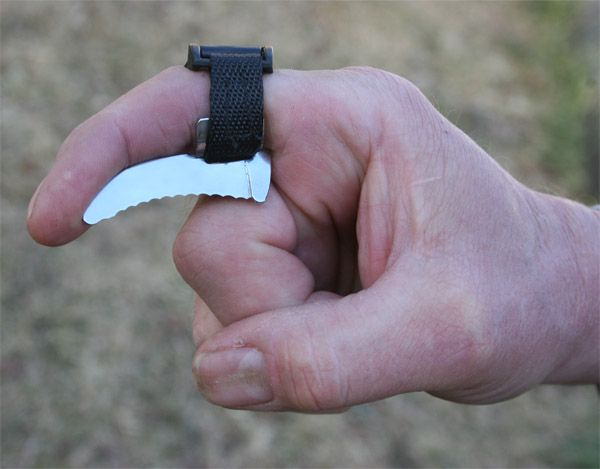 Helps gut deers and elks faster. I mean Dayummmmmmm :) I'm scared and amazed