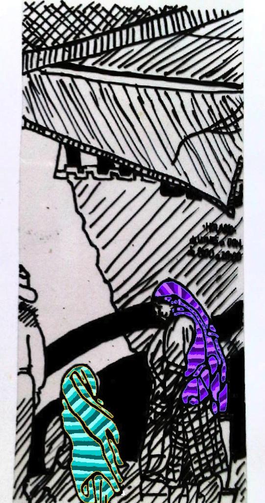Mujeres de Tlacolula con tocados y rebozos (7)