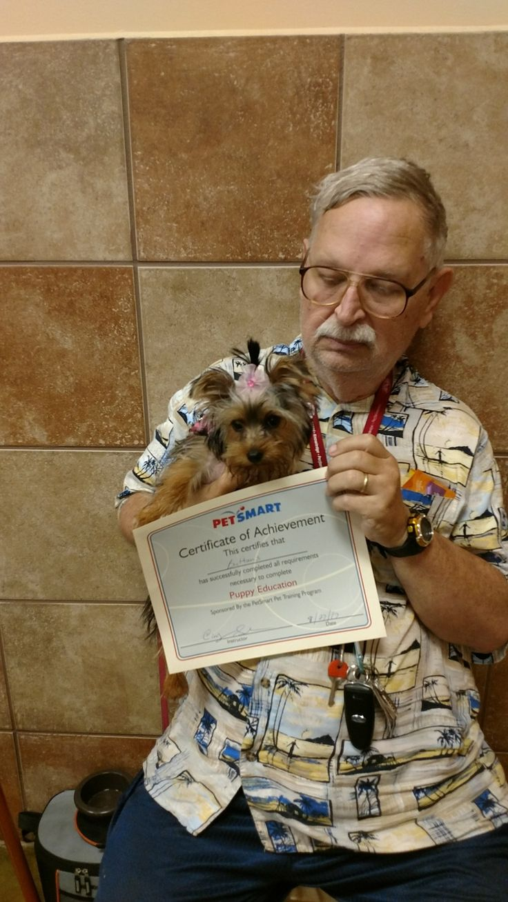 Buttons pasted her puppy training class.
