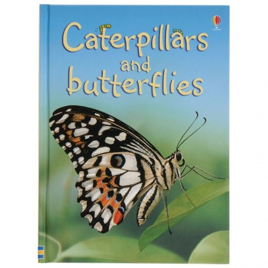 """Caterpillars and Butterflies:Stretch your budget with economical, library-quality non-fiction books that will delight young readers!  """"How do caterpillars turn into butterflies?"""" """"What do butterflies eat?"""" """"What is a moth?"""" In this book your children will find the answers! Everything children want to know about insects is simply stated and beautifully illustrated.  Vivid photos of insects within their environments are paired with accurate related facts; text prepared for young readers by a…"""