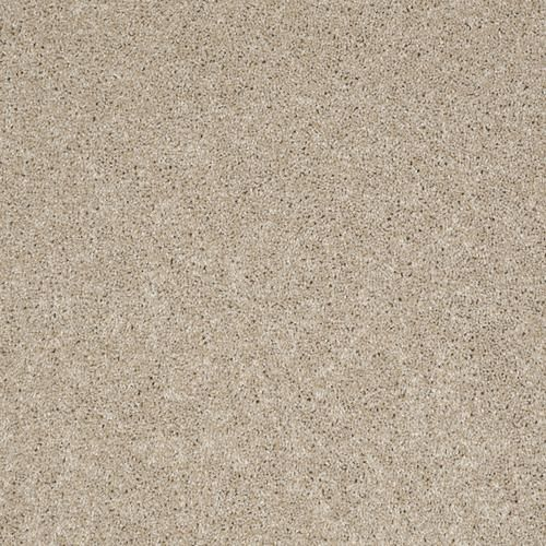 Best 25+ Plush Carpet Ideas On Pinterest