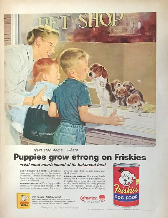 1957 Beagle puppies Friskies dog food advertisement. Art by Douglass Crockwell. Nice Oldsmobile ad on the reverse side. This is a large, full page magazine ad in excellent condition. Measures 13 3/4 inches tall by 10 1/2 inches wide. Douglass Crockwell was a commercial artist who