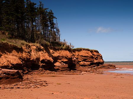 I was here last week! Beautiful beach....Cabot Beach Provincial Park, this park has a hugh campground at the top of its red cliffs and trails that run on for miles