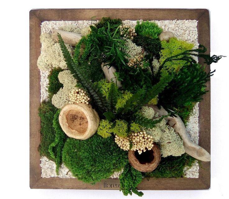 tableau végétal plantes naturelles stabilisées Genève H28.5