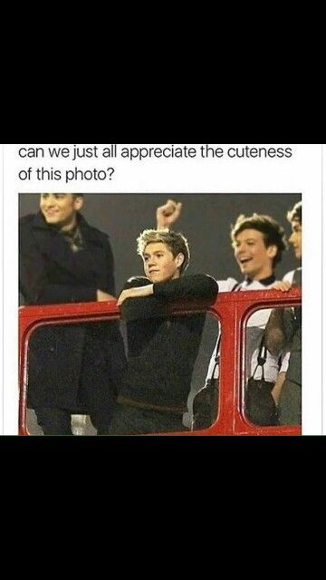 Niall is cute we all knkw that <3