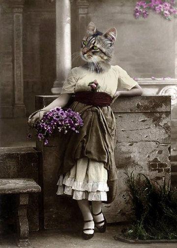 Karen, gato caprichoso con ropa antropomórfica Lámina Regalo único peculiar para amante de los gatos Collage de arte Decoración de la pared Tarjetas de notas para gatos