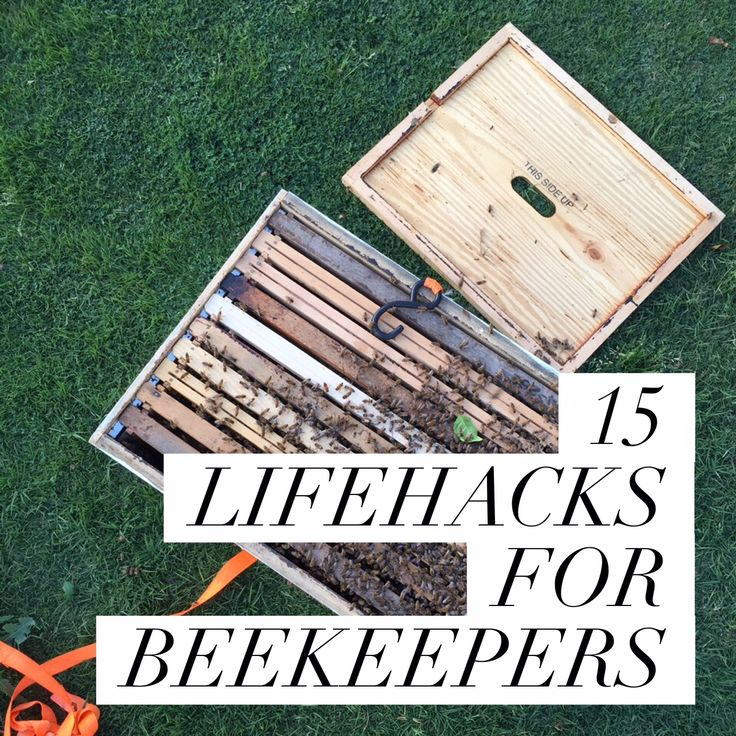 It's Sara writing again! Recently, on Facebook, I saw a post about lifehacks, and it got me wondering: Why I haven't seen more beekeeping hacks? I know they exist, but don't they …
