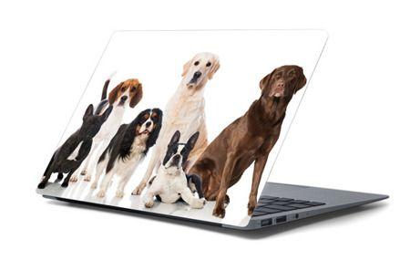 Naklejka na laptopa - Psy 4681
