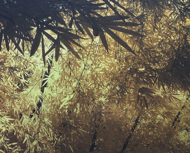 Bambu, por Antonio Sagúes.