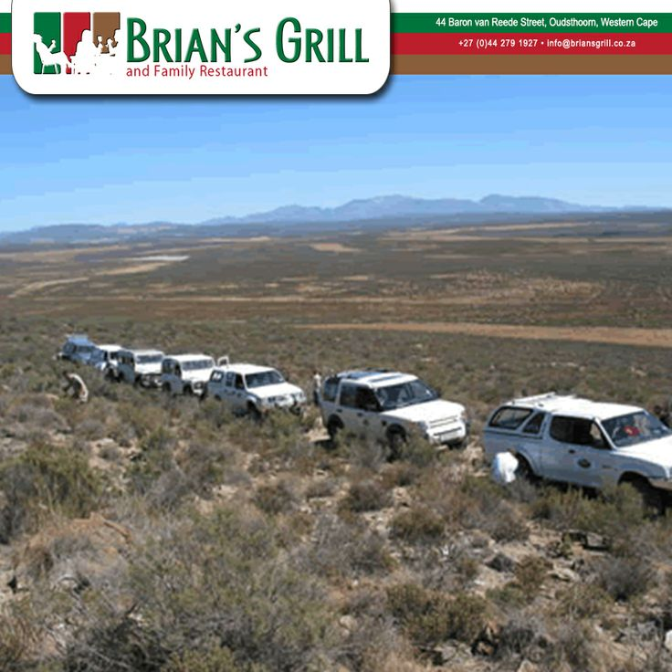 The region is filled with many different adventure routes for off-road drivers, mountain bikers and hikers. Visitors are able to plan their own scenic and adventure routes or having a guided tour in a hired 4 x 4 vehicle or doing a group 4 x 4 self-drive in the area. Want to see more what to do in Oudtshoorn click here: http://besociable.link/kq #Oudtshoorn #Adventures #offroad