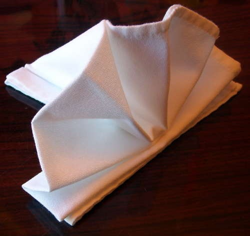 Cloth Napkin Folding With Rings