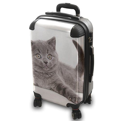 Cat Backpacks | -Cat-Lightweight-Hard-Case-Luggage-Shell-Spinner-Trolley-Travel-Bag ...