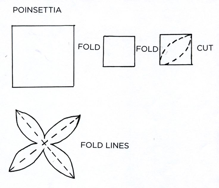 17 Best Images About Poinsettia On Pinterest 3d Paper