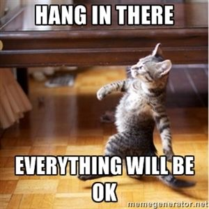 Meme Maker - Hang in there Patty