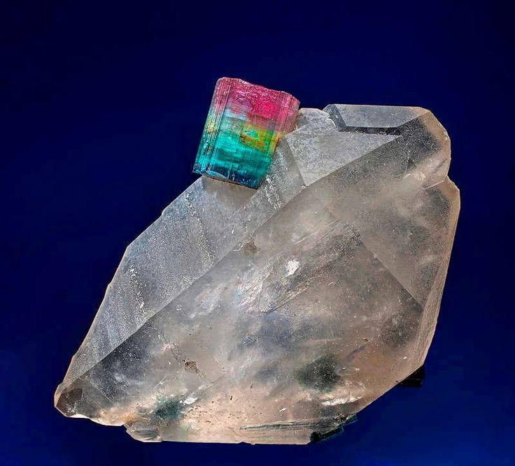Multi-color Tourmaline on Quartz, from Sapo Mine, Ferruginha, Conselheiro Pena, Doce valley, Minas Gerais, Brazil