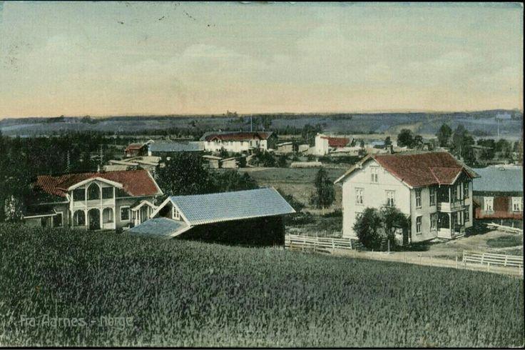 Akershus fylke Nes kommune Årnes kolorert kort stemplet Sæterstøen 1911 Utg Küenholdt