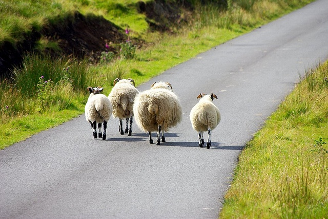 Where are we? Do you think anyone will find us? Where is everyone else?.................