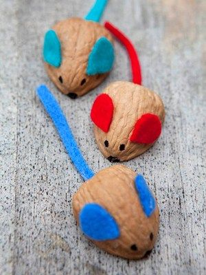 Walnut mice craft. Get your little one loving the great outdoors with some cute creatures you can race together