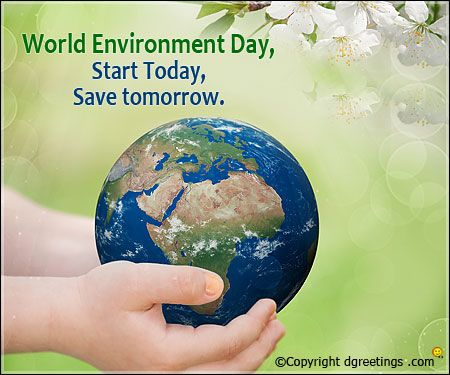 Send Environment Day Quotes to your dear ones and encourage them to preserve the beauty of nature by planting more trees.
