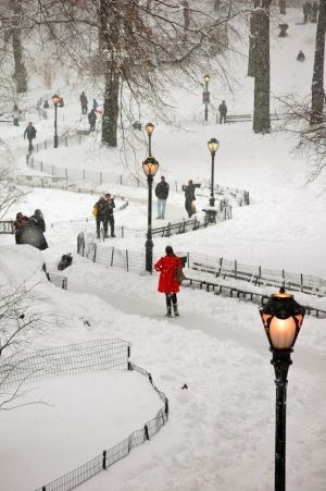 Central Park covered in snow, NYC: