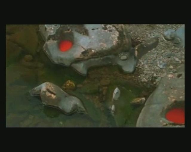 Andy Goldsworthy Rivers And Tides   River and Tides [2] > Andy Goldsworthy on Vimeo