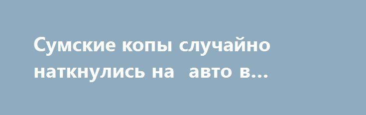 Сумские копы случайно наткнулись на  авто в розыске http://sumypost.com/sumynews/obwestvo/sumskie_kopy_sluchajno_natknulis_na_avto_v_rozyske  Три года машину искала исполнительная служба Харькова.