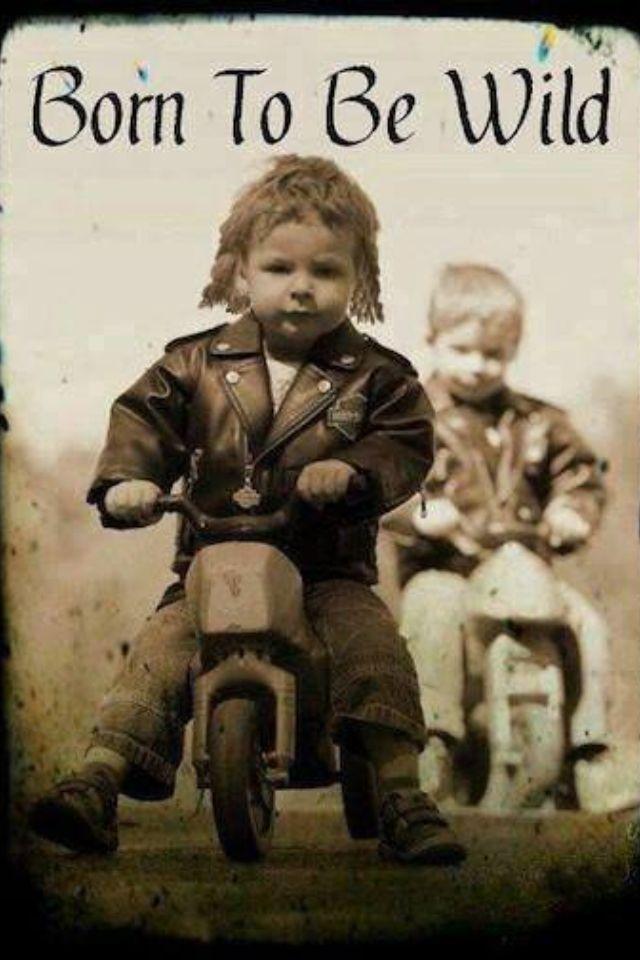 """En härlig bild på """"smotingarnas"""" framtid HÄRLIG framtid ???!!!"""