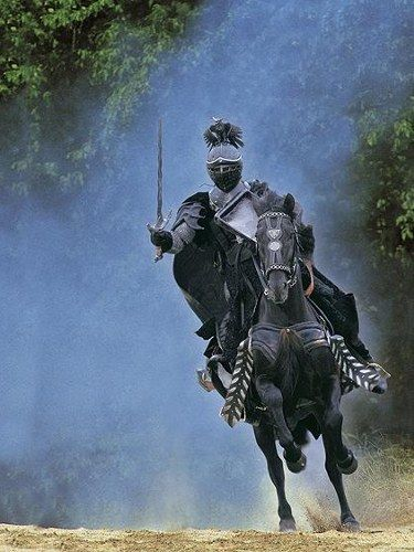 #medieval #knight 'The Black Knight'