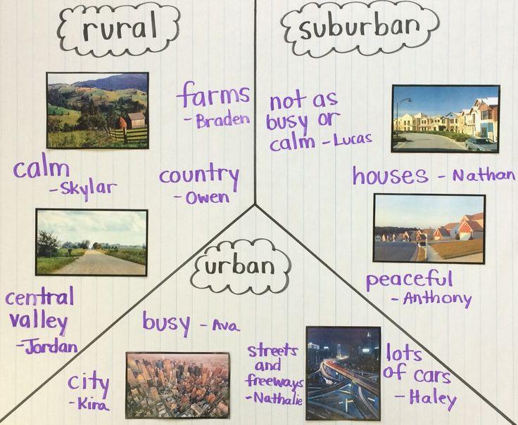 Rural Suburban Urban Worksheets