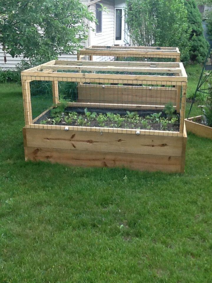 Raised Garden Fence Ideas Cheap