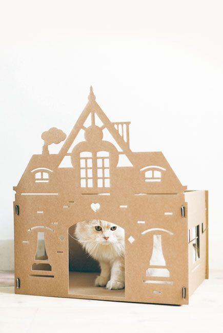 Poezen zitten graag in dozen. KEK Amsterdam maakt kattenpandjes van karton