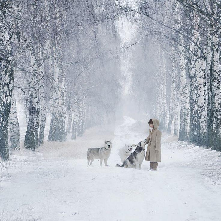 Morning walk in winter white