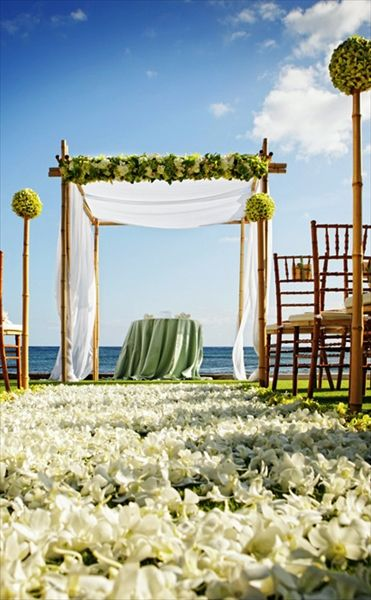 the beach house reception backdropwedding ceremonieswedding