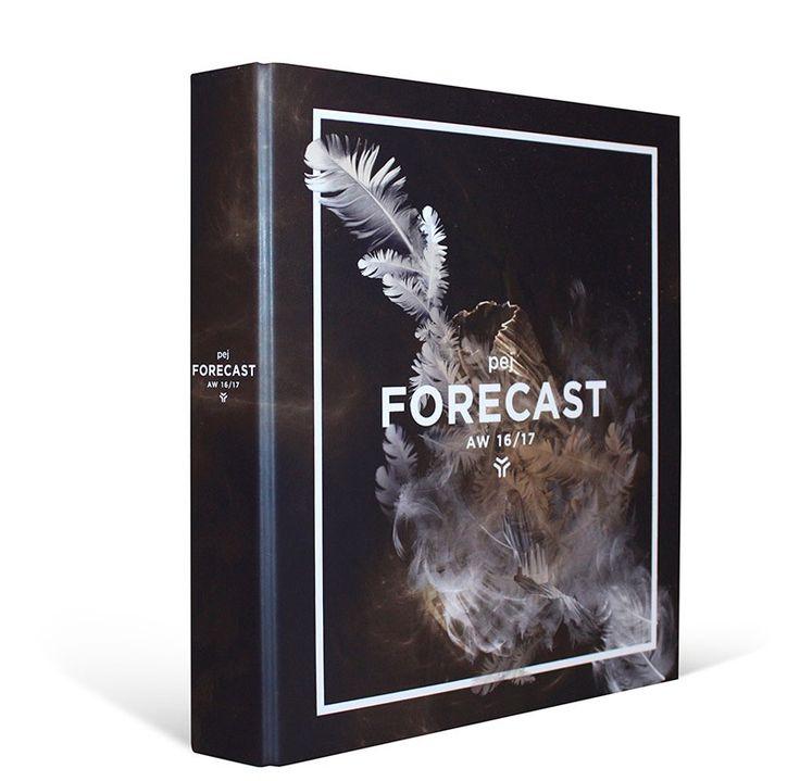 pej forecast AW 16/17 - pej trend
