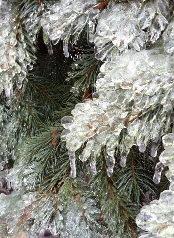 Dec/13 Ice Storm Toronto Canada