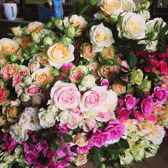 David Austin Roses in shades of pink at Avonlea Flowers