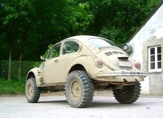 Muddy Beetle