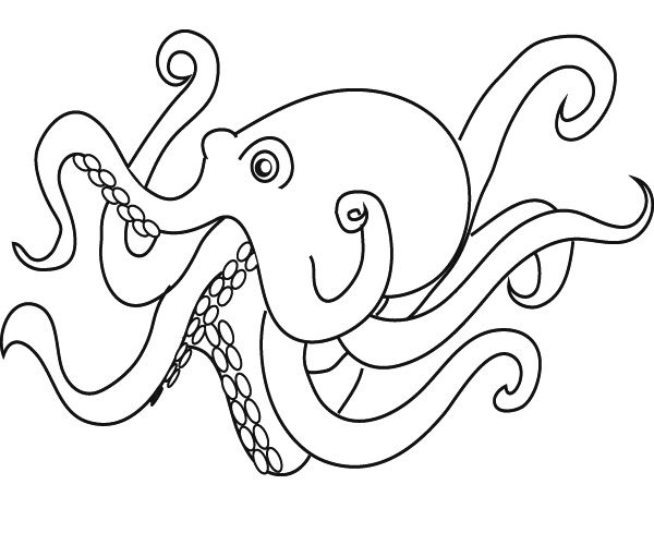 o is for octopus coloring pages - photo #8