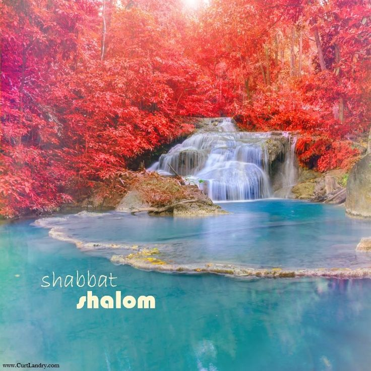 """Shabbat Shalom...  """"...He leads me beside the still waters.""""—Psalm 23.2"""