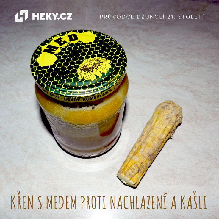 kren-s-medem