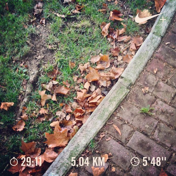 Afternoon reference workout: 7min warm-up  3 min run at full speed  20min run at easy pace. Have a great evening! #run #runner #run4fun #runlife #running #runnerscommunity #instarunning #instarunners #somosrunners #workout #corrida #correr #nike #nikeplus #nikeplusrunners #healthylife #lifestyle #runaddict #runeveryday #justdoit #cidaderunit #runtoinspire #fitlife #runchat #seenonmyrun #worlderunners #nrc