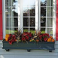Fall and Winter Window Box Ideas