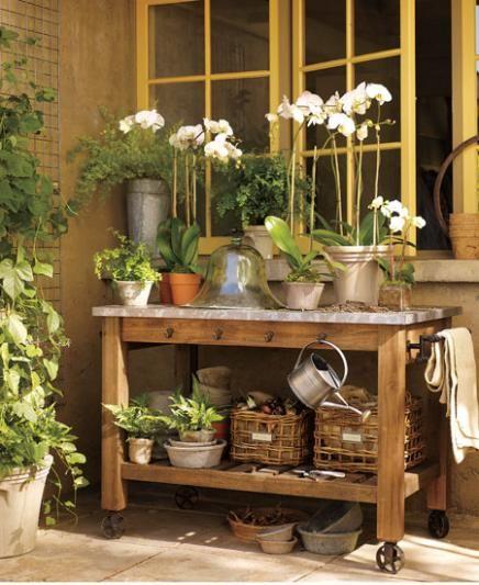 Outdoor Space - Gardening
