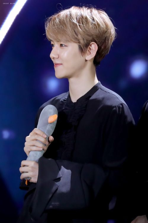 Baekhyun - 170114 31st Golden Disk Awards  Credit: Chiot Blanc. (제31회 골든디스크 어워즈)