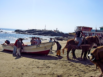 Pulling the fishing boats out of the water with horses.   Horcon, Chile.  -Photo by Elissa Bertot