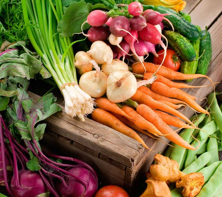 vegetables  Eat all the colors.