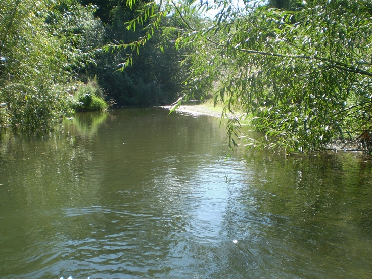 River Lugg, Herefordshire (good for wild swimming)