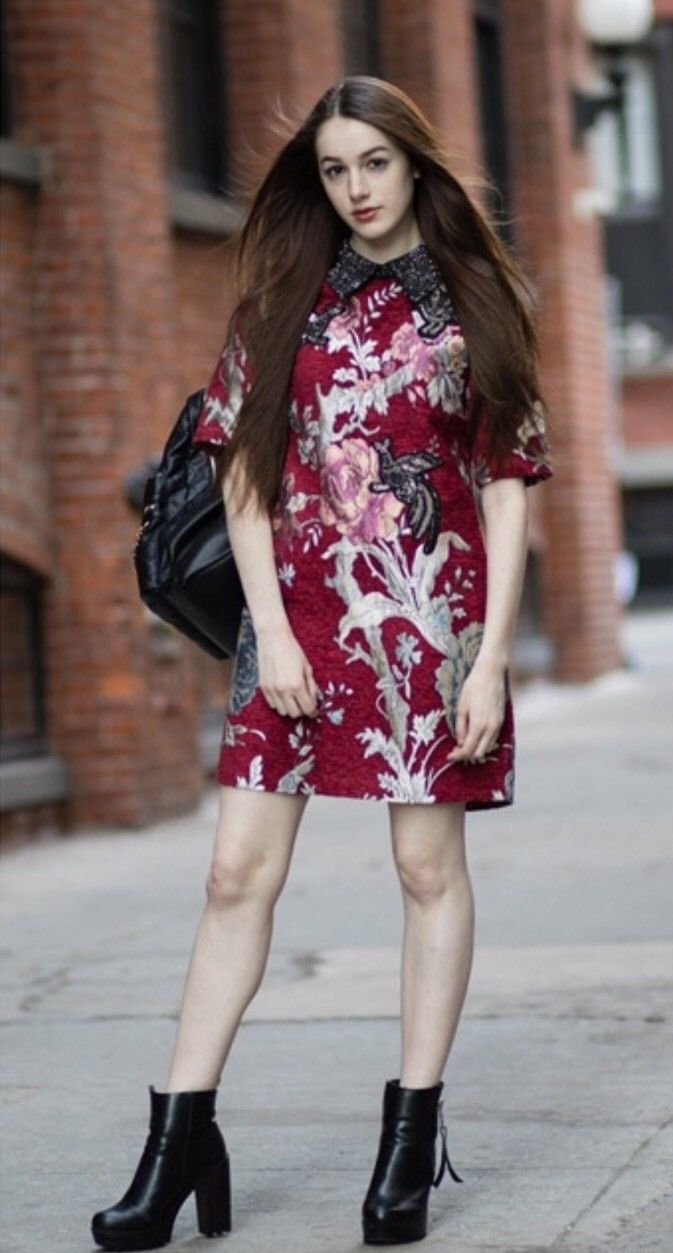 Awesome Awesome Zara Red Jacquard Floral Sequin Dress XS 2018 Check more at http://24shopping.gq/fashion/awesome-zara-red-jacquard-floral-sequin-dress-xs-2018/