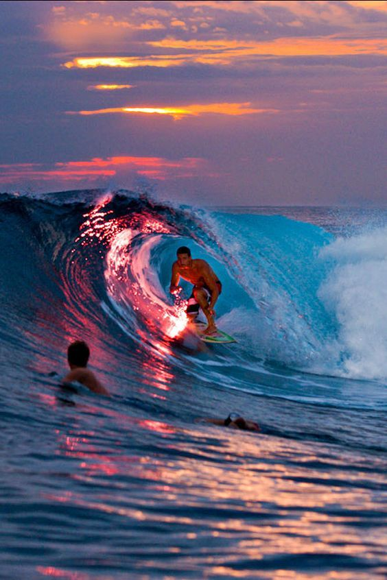 Best Board Bored Images On Pinterest Arizona Cactus Aunt - Guys sets himself on fire before surfing a huge wave