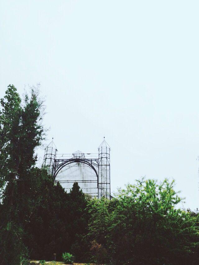 Berlin botanical garden